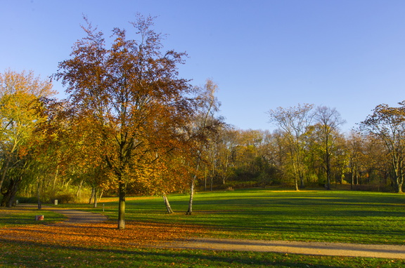 Volkspark Friedrischain (Berlin) (16)